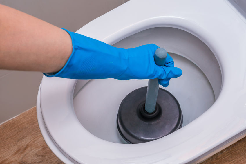 What Causes Toilet Backups?